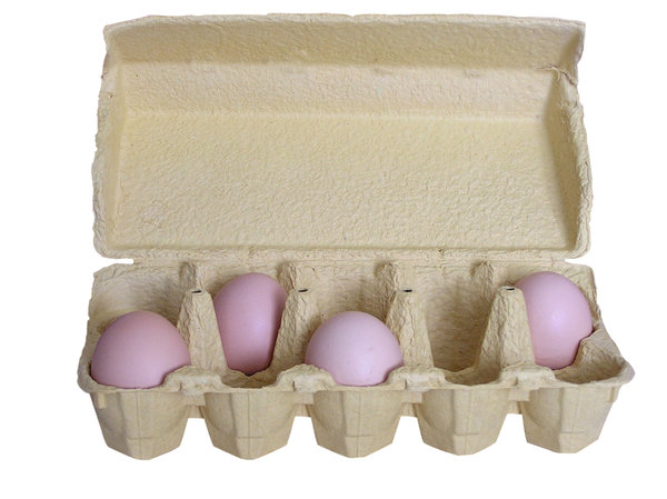 Egg: Eggs  and egg container