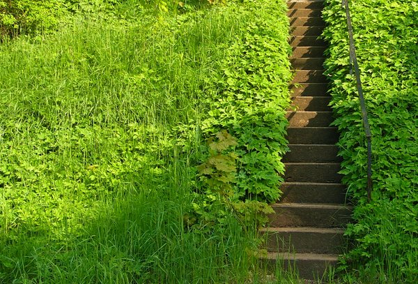 Stairway to Heaven? II: Stairs to a garden