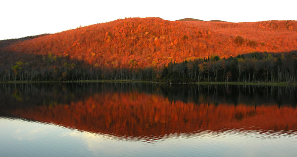 Reflections of Autumn: I took this one night last September just before the sun was about to set, the colors were amazing.