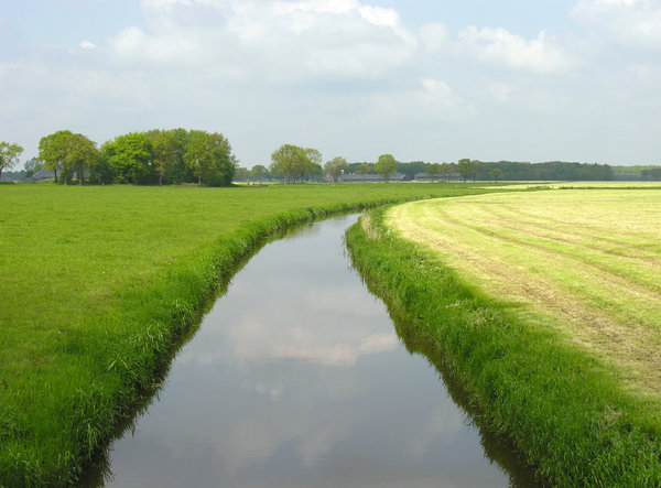 Dutch grassland with water: A typical overview of a Dutch landscape. Boringly flat, that is. :-)