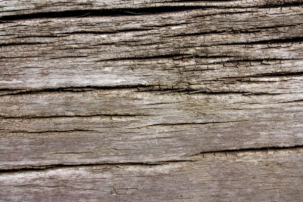 old wood ...: ... texture