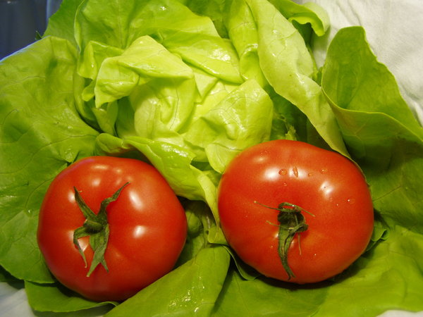 tomato 02: tometos and green salad