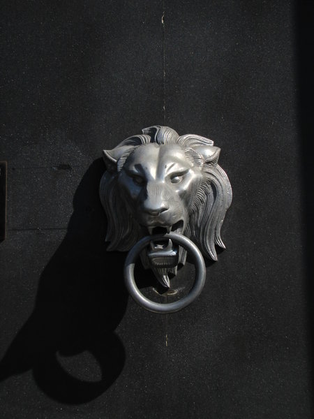 lion: door decoration
