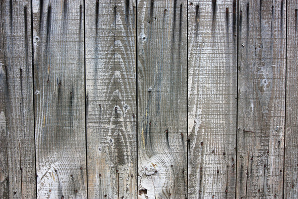 Old wood texture: shed wall with wood stained by old nails, and weathered surface