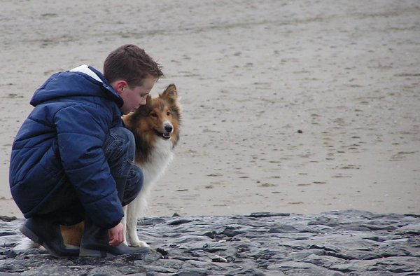 Boy with dog at the beach (2): Another picture of a boy with dog on the beach