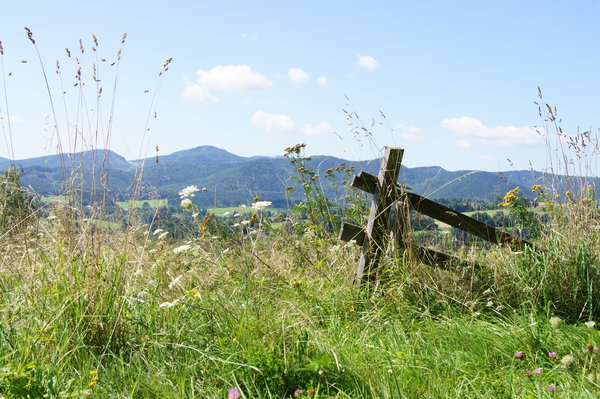 meadow in mountains: Destroyed fense at the meadow in polish mountains