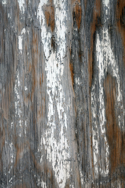 Weathered Wood: A weatherd wood door.