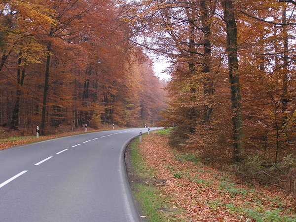 Autumn 1: season on the road
