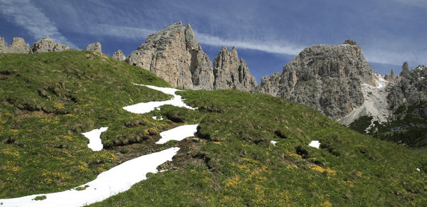 Mountain slope: A flower-dotted slope high in the Dolomites, Italy.