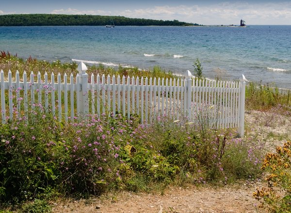 Picket fence on beach: A white fence and wild flowers on the beach.
