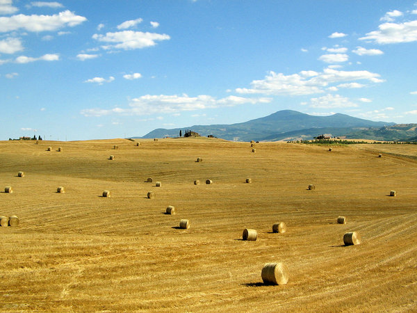 Toscana, Italia: No description
