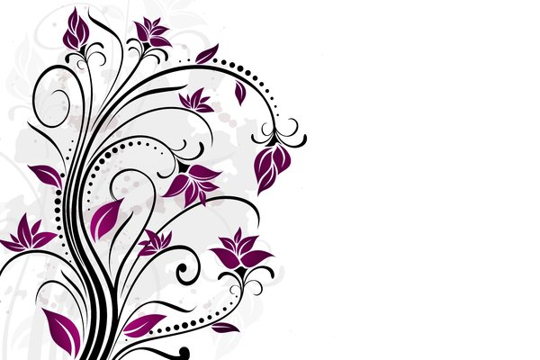 Yet Another Floral 1: Colorful floral elements on a white background. Which do you like most? ;)
