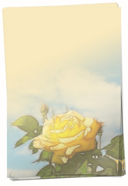 Yellow Rose Paper: Three sheets of yellow paper with rose graphic