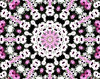 pink & white daisy wheel