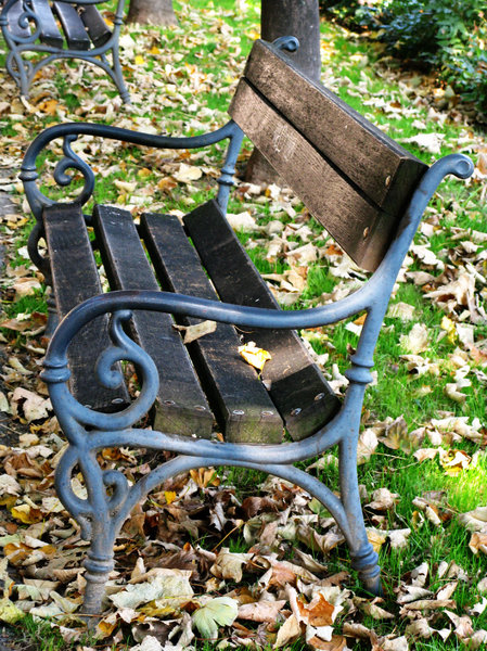 bench in autumn: none