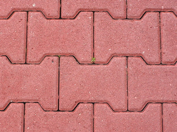 Brick pavement: A pavement made of bricks