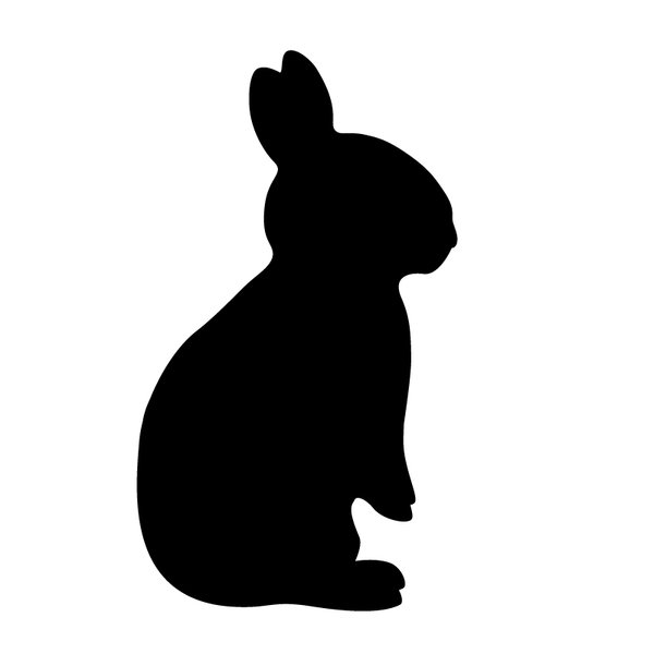 rabbit: made this in Adobe Illustrator