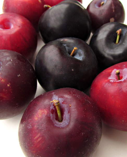 plums: variety of firm ripe plums