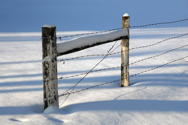 Snow: A farm fence in the snow.