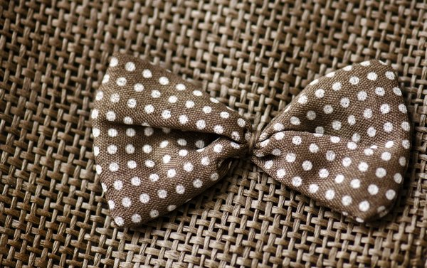 Dotted bow: brown dotted bow on fabric