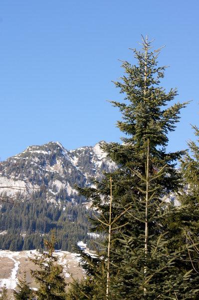 Uitzicht op de bergen gratis stock foto 39 s rgbstock gratis afbeeldingen al71 february - Uitzicht op de tuinman ...
