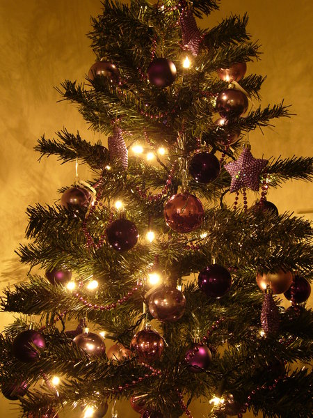 Graham's Christmas Tree 8: Everyone has been so nice about my Christmas Tree collection from last year I thought I'd create some more :) Last year's theme was silver and red - this year it's purple. Enjoy and, as always, I'd love to hear where you're using the photos!