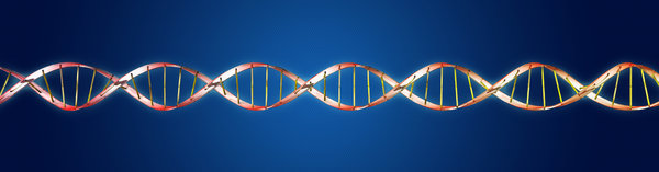 DNA molecule 2: DNA double helix molecule illustration
