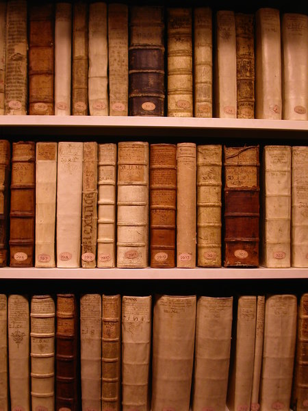 old books in a shelf: famous libary in wolfenbuettel, germany, with the most expensive book of the world (9 million euros)