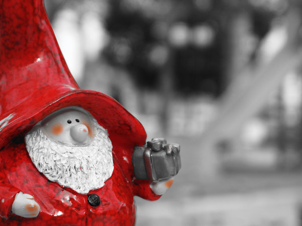 Gnome B/N 010: Xmas is coming