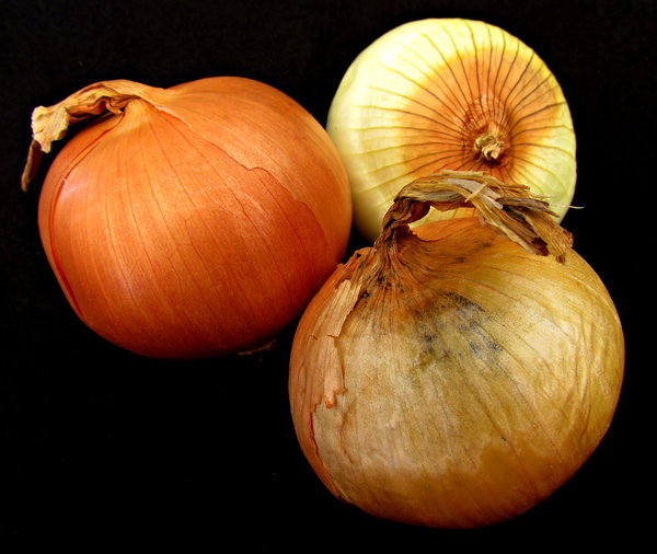 onions: several brown onions