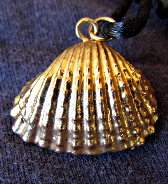 gold shell: small gold covered shell jewellery