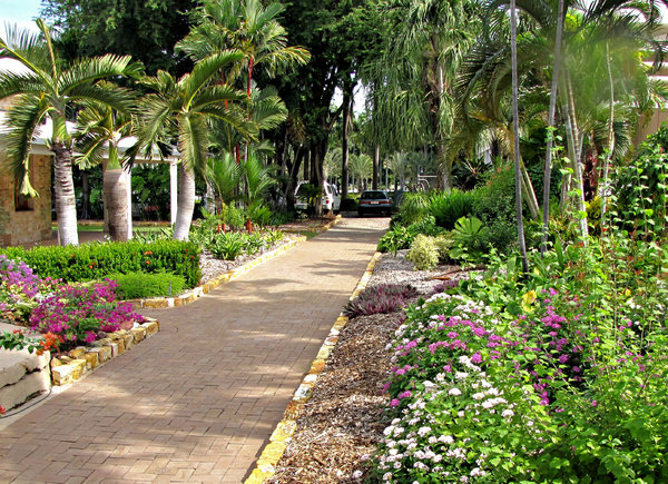 garden path: path in a tropical garden