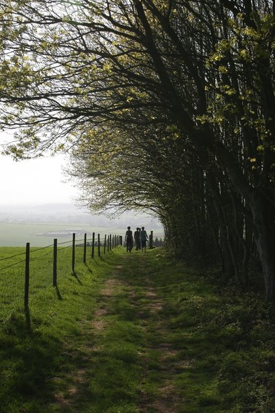 Country walk: Walkers on the South Downs, England, in spring.