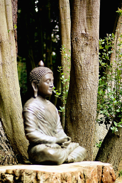 Meditation in the woods: Meditating Sculpture