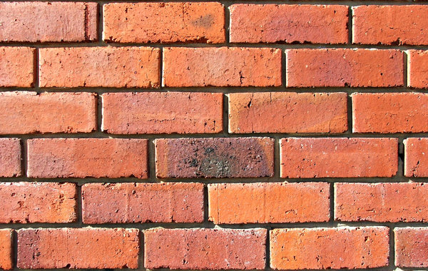 up against a brick wall: standard traditional brick wall