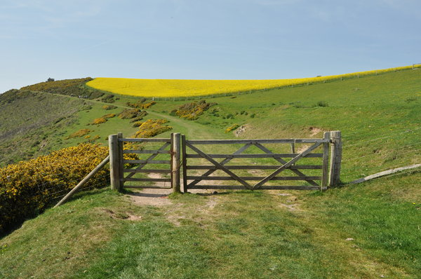 Gate blocking pathway: Another gate along a cliff walk in Devon, England.