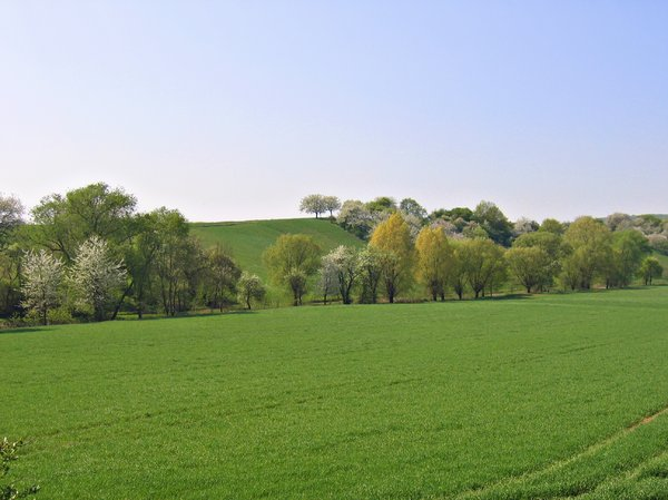 spring landscape in the hills : spring landscape in the hills 4