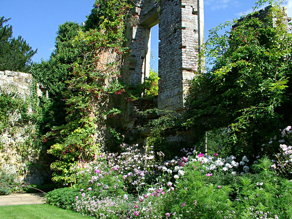 scotney castle ruin: the decayed part of scotney castle now being reclaimed by nature in the form of garden