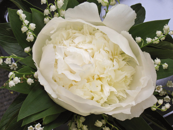 peony & lilies of the valley: peony and lilies of the valley bouquet