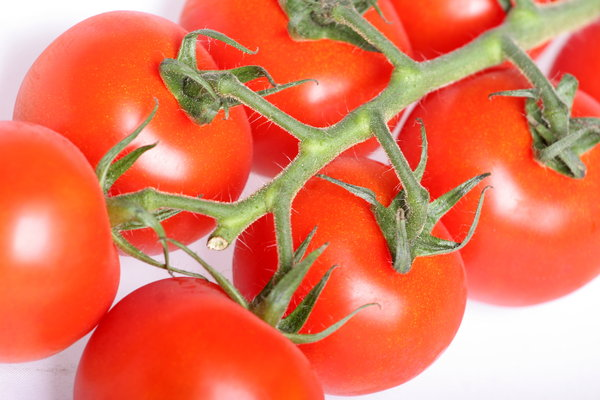 Vine Tomatoes: Close-up of vine tomatoes