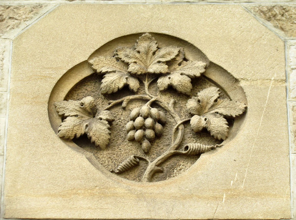 solid vine: sculpted historical wall symbol
