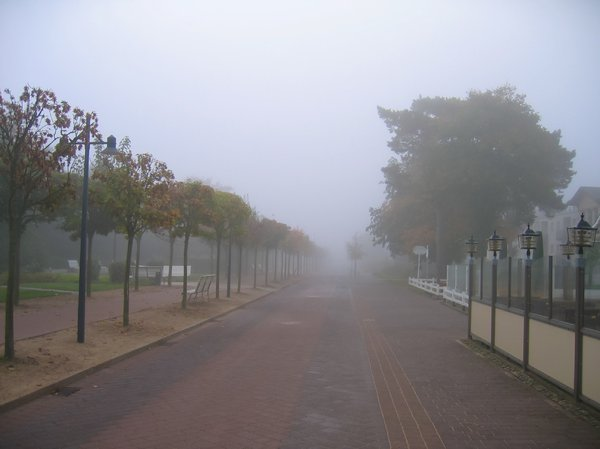 street in morning mist: street in morning mist (Ahlbeck, Usedom, Germany)