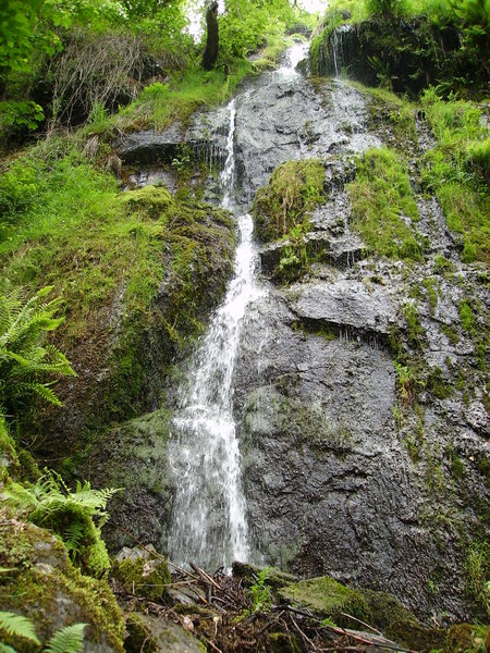 Country waterfall: The image was taken in a large wooded area of Devon.
