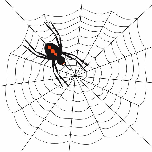 Arachnophobia 4: Spooky spider on web.  Black over white.