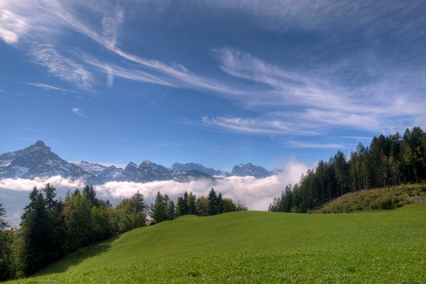 Grass mountains and clouds - H: Swiss landscape featuring a field, mountains with snow trees  and low hanging clouds. The image is HDR.