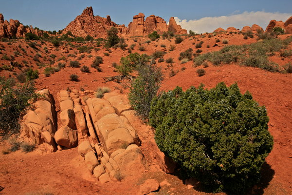West landscape: Landscape of Arches national Park
