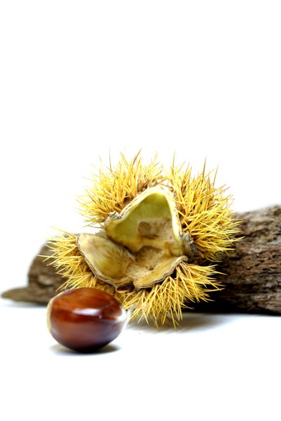 Chestnuts #1: no description