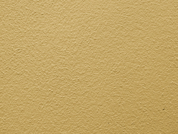Free Stock Photos Rgbstock Free Stock Images Cream