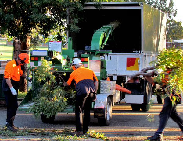 working men & machines3: workmen feeding tree branches into wood chipping machine