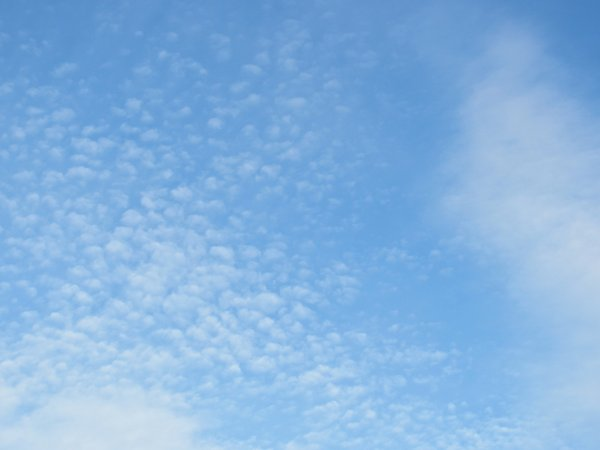 tiny cirrus clouds: tiny cirrus clouds